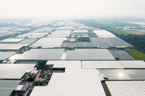 Greenhouses, Westland, Zuid-Holland, Netherlands - CUF45351