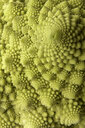 Close up of Romanesco cauliflower - LUXF00991