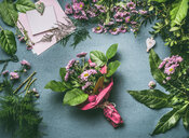 High angle view of fresh pink flowers - INGF00481