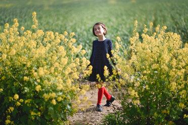 Little girl in nature field wearing beautiful dress - INGF00793