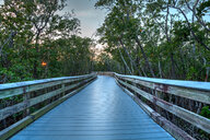 View of a deserted footbridge by the trees - INGF00868