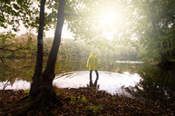 Rear view of a person standing by the trees in a sunny forest - INGF01294