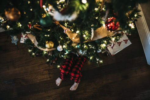 Low section of boy sitting by Christmas tree on hardwood floor at home - CAVF49170