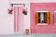 Potted plants outside pink house in Italy - INGF01583