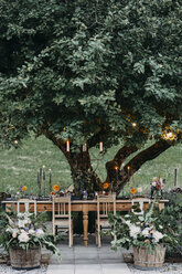 Festive laid table with candles under a tree - ALBF00698