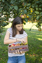 Girl with harvested apples in wooden box - LVF07482
