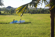 Friends with surfboards walking on grassy field against sky - CAVF49698