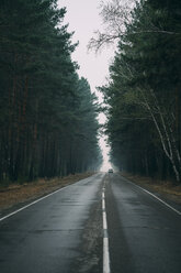 Back view of car driving on country road through pine forest - VPIF00922