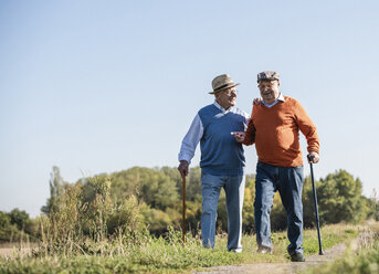 Two old friends taking a stroll through the fields, talking about old times - UUF15462