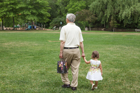 Rear view of grandfather holding granddaughter's hands while walking on grassy field at park - CAVF50405