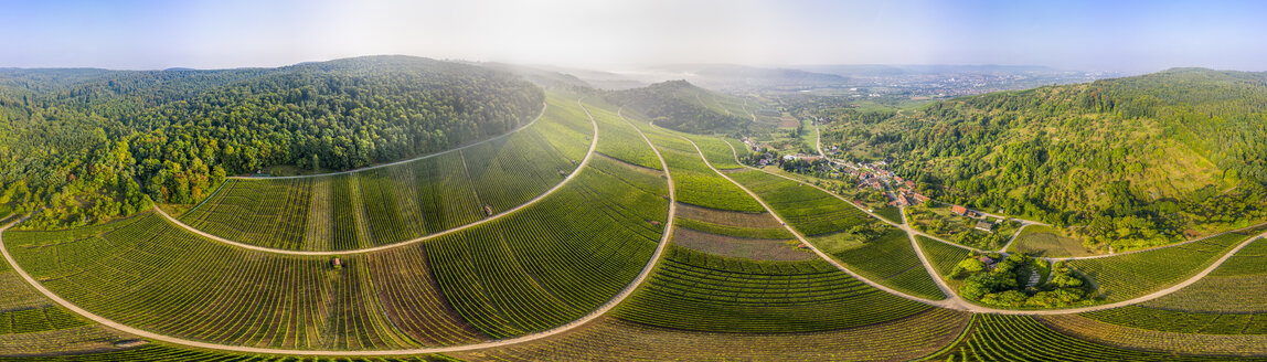 Germany, Baden-Wurttemberg, Aerial view of vineyards At Gundelsbach Valley - STSF01765