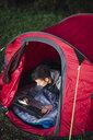 Man camping in Estonia, sitting in tent, using laptop - KKA02789