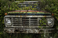 Abandoned car on field in forest - CAVF50941