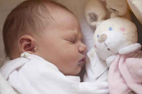 Sleeping baby girl with toy bunny - JLOF00240