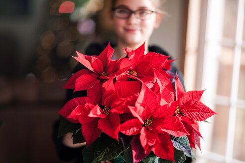 Girl holding christmas poinsettia in living room, portrait - ISF20091
