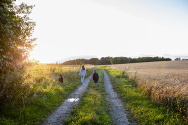 Two children with a dog walking on a field path at sunset - OJF00267