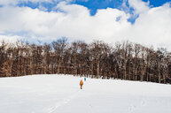 Rear view of siblings walking on snow covered field against cloudy sky in forest - CAVF51706