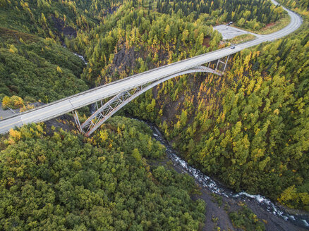 High angle view of bridge in forest - CAVF52102