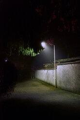 AN illuminated tree against the night sky outdoors - INGF05153