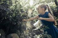 Girl gathering blackberries in plastic bag - TGBF00528