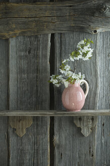 Twig of cherry blossoms in jar in front of rustic wooden wall - ASF06240