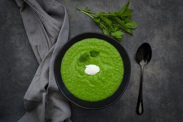 Bowl of pea mint soup - LVF07509