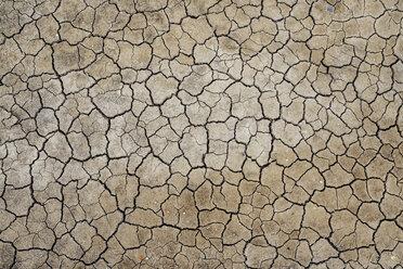 France, Marais salants de Guerande, dry cracked earth - GEMF02442