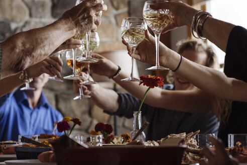Family toasting glasses at Thanksgiving dinner - TGBF01413