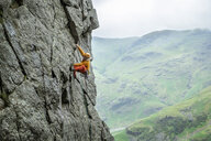 United Kingdom, Lake District, Langdale Valley, Gimmer Crag, climber on rock face - ALRF01358