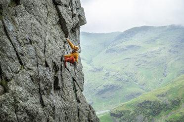 United Kingdom, Lake District, Langdale Valley, Gimmer Crag, climber on rock face - ALRF01358