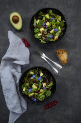 Two bowls of mixed salad with avocado, red currants and borage blossoms - LVF07512