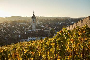 Switzerland, Canton of Schaffhausen, Schaffhausen, Old town, view from Munot vineyard - ELF01935