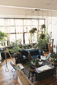 High angle view of loving gay couple kissing against potted plants at home - CAVF52822