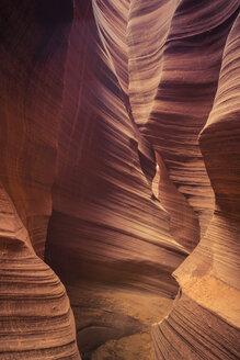 USA, Arizona, Page, Rattlesnake Canyon - FCF01560