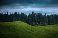 Nature scene of trees surrounding a hut in the German alps under dark clouds - INGF06122