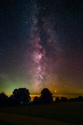 Milky Way Galaxy background over the night forest - INGF06161