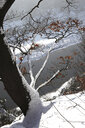 Germany, Saxony, Elbe Sandstone Mountains, Bastei area in winter - JTF01132