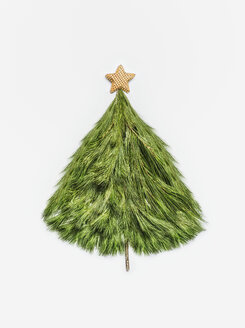 Close-up studio shot of a mini Christmas tree on a white background - INGF06273