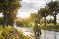 Couple riding motorcycle on wet road amidst trees during sunset - CAVF53792