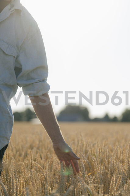 Close-up of man in a field touching ears - GUSF01314 - Gustafsson/Westend61