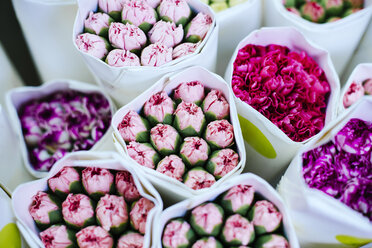 China, Hong Kong, bouquets of colourful flowers at the flower market - GEMF02516