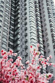 China, Hong Kong, Hong Kong Island, facades of apartment tower, partial view - GEMF02525