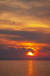 Croatia, Istria, Porec, Adriatic Sea, Sailing boat during sunset - WWF04449