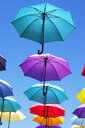 Colorful umbrellas - WWF04461
