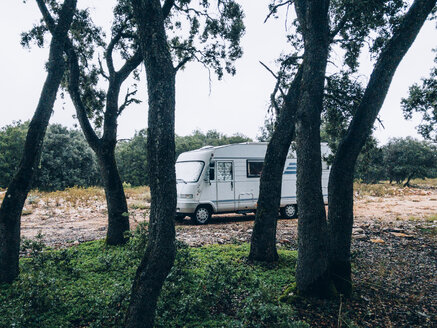 Big caravan and trees in the forest. - OCMF00106