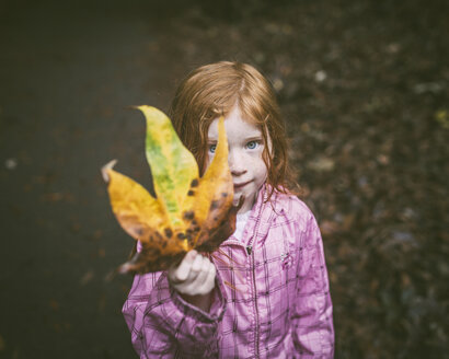 High angle portrait of cute girl showing autumn leaf at park - CAVF54152