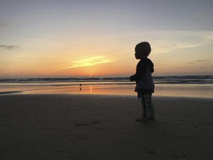 Boy standing on beach against sky during sunset - CAVF54428