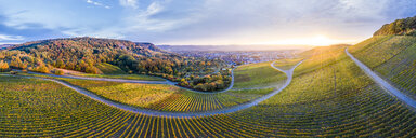 Germany, Baden-Wuerttemberg, Aerial view of Korber Kopf, vineyards at sunset in autumn, panorama - STSF01801