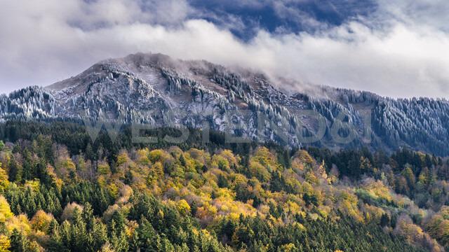 Germany, Bavaria, Oberallgaeu, Gruenten in autumn - STSF01807 - Stefan Schurr/Westend61