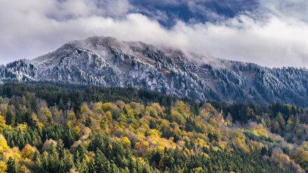 Germany, Bavaria, Oberallgaeu, Gruenten in autumn - STSF01807